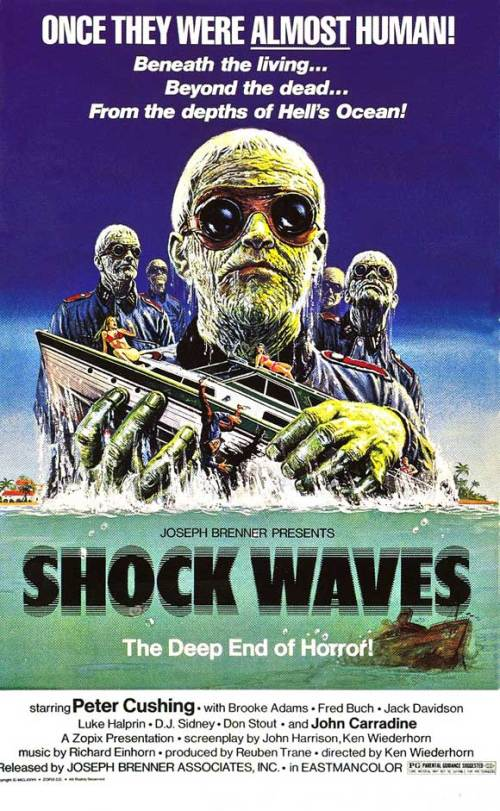 shock waves 3